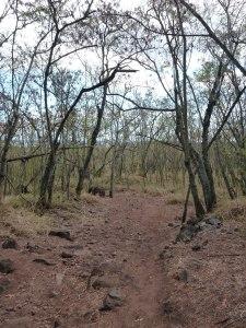 start of trail