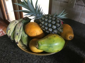 the haul of fruits
